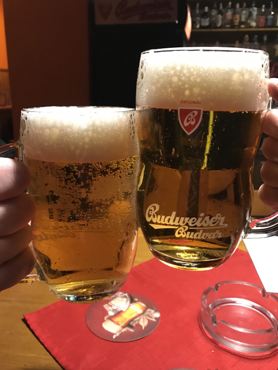 Cheers! Na zdraví! The Original Czech Budweiser Beer
